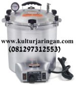 Electric autoclave